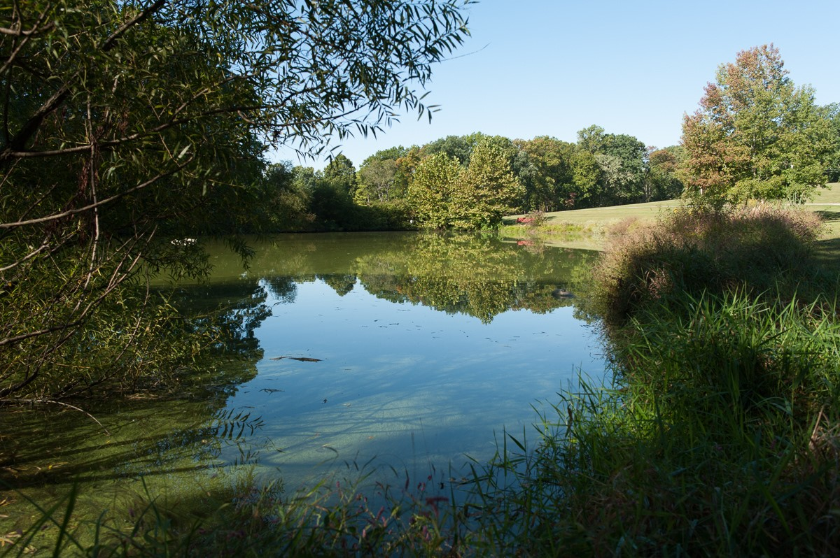 NCP Little Pond.jpg
